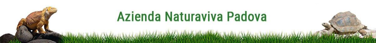Azienda NaturaViva Padova