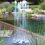 Water quintet
